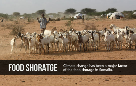 Urgent Need to Support African/Somali Farmers to Adapt to Climate Change and its Effects