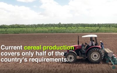 Unlocking the Potential of Agriculture mechanization in Somalia