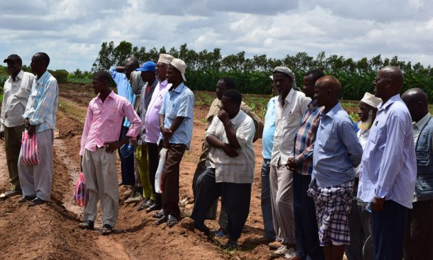 Demonstration Plots: A Source of Innovation, Modern Technology and Skills for Farmers
