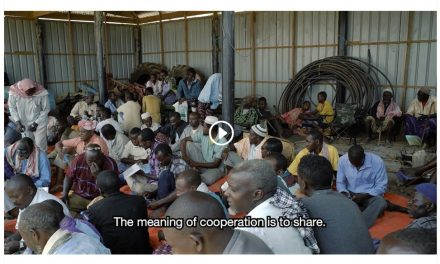 Somali Agriculture Cooperatives (Video)