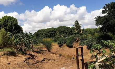 Hydrological Drought of the Shabelle River and its Economic Impact to Lower Shabelle Farmers